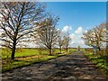SK9564 : Somerton Gate Lane, Waddington by Oliver Mills