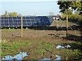 SO8941 : New solar farm by Philip Halling