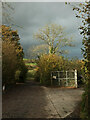 SX8763 : Entrance to Sutton Seeds Trial Grounds by Derek Harper