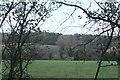 TF0516 : Distant woodland by Bob Harvey