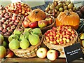 TQ0658 : Wisley - Autumn Show by Colin Smith