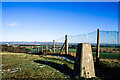 SD5201 : Trig point beside wire mesh fence by Trevor Littlewood
