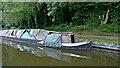 SO8584 : Sunken narrowboat near Kinver, Staffordshire by Roger  Kidd