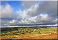 SE1340 : Bingley Countryside by Scott Robinson
