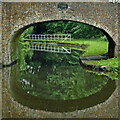 SO8480 : Canal bridge and overflow near Caunsall in Worcestershire by Roger  Kidd