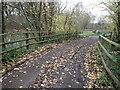 TQ6839 : Track near Hopgarden Cottages by Marathon