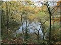 SK3623 : Blackwater pit, Ticknall limeyards by Christine Johnstone