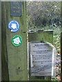 ST7448 : Paths and pleasures in Murder Combe by Neil Owen