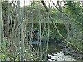 SE1744 : Bridge over Ellar Ghyll by Stephen Craven