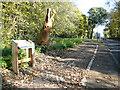 TQ7755 : Tree sculpture, Ashford Road (A20) by John Baker