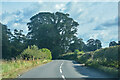 NZ0714 : Rokeby : Road by Lewis Clarke