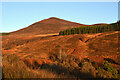 NC8410 : Beinn Smeorail, Scottish Highlands by Andrew Tryon