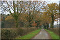 TM2965 : Driveway towards Great Lodge by Christopher Hilton
