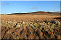 NY9187 : Ancient field boundaries & cairns at Darney Crag by Andrew Curtis