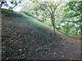 SP4731 : Defensive bank at Deddington motte and bailey castle by Sandy Gerrard