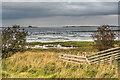 NU1038 : Fenham Flats by Ian Capper