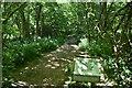 TQ6427 : Footpath, Batt's Wood by N Chadwick