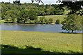 TQ6328 : Wadhurst Park Lake by N Chadwick