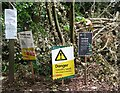 TQ1350 : Ranmore Common - Forestry Work by Colin Smith