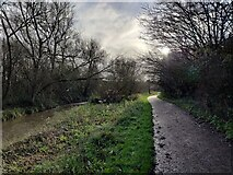 SP0982 : Millstream Way along the River Cole by Mat Fascione