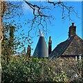 TQ8613 : Winterstow Farm Oast, Peter James Lane, Pett by Oast House Archive