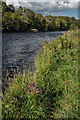 NT5033 : River Tweed by Ian Capper