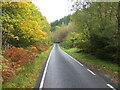 NM9104 : Tree-lined road (B840) beside Loch Awe by Peter Wood