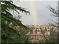 NT2470 : Rainbow over Morningside by M J Richardson