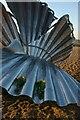 TM4657 : Flowers for Benjamin Britten, Scallop, Aldeburgh by Christopher Hilton