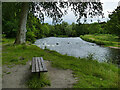 NJ9309 : Bench by the river Don, Seaton Park by Stephen Craven
