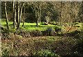 SX8557 : Yalberton Stream by Derek Harper