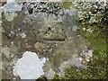 NG8319 : Ordnance Survey Cut Mark by Peter Wood