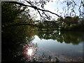 SU9747 : Loseley Park - Lake by Colin Smith