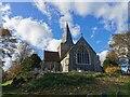 TQ5202 : St. Andrew's Church, Alfriston by PAUL FARMER