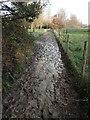 TQ5337 : Muddy footpath at Groombridge by Marathon