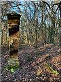 TQ4124 : Milestone, Sheffield Green by Mandy Barrow