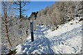 NT2740 : Snow-covered bike trail, Glentress Forest by Jim Barton