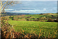 SX9171 : Towards Teignmouth by Derek Harper