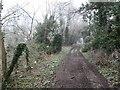 SO8591 : Path Scene by Gordon Griffiths