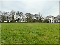 SE2237 : Former Leeds City College campus - soccer pitch by Stephen Craven