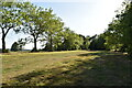 TQ5345 : Chestnut Avenue, Penshurst Park by N Chadwick
