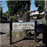 SZ0895 : Northbourne: Leybourne Avenue by Chris Downer