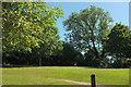 SX8659 : Snowdonia Close Paignton Local Green Space by Derek Harper