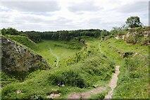 NZ3332 : Bishop Middleham Quarry SSSI by Roger Muggleton