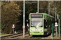 TQ3364 : Tramlink by Peter Trimming