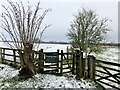 SP7839 : Gate on the footpath to Stony Stratford by Philip Jeffrey