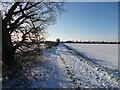 TF1606 : Farm track and footpath between Peakirk and Glinton in the snow by Paul Bryan