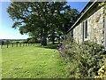 ST8426 : Grounds of the Coppleridge Inn, Motcombe by Jonathan Hutchins
