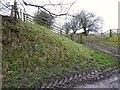 NY7005 : Grassy bank near Badger Hill by Adrian Taylor