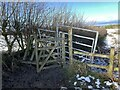 SJ7951 : Broken kissing gate and metal gate by Jonathan Hutchins